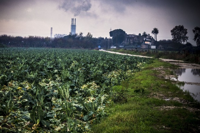 Mauro Pagnano © The incinerator facility in Acerra, amidst cultivated land