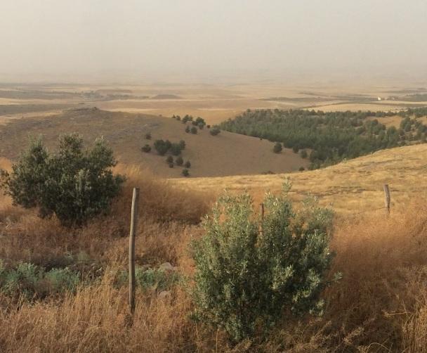 Göbekli Tepe (Urfa, Kurdistan) site of one of the earliest known human structures. Kobane lies beyond the horizon.