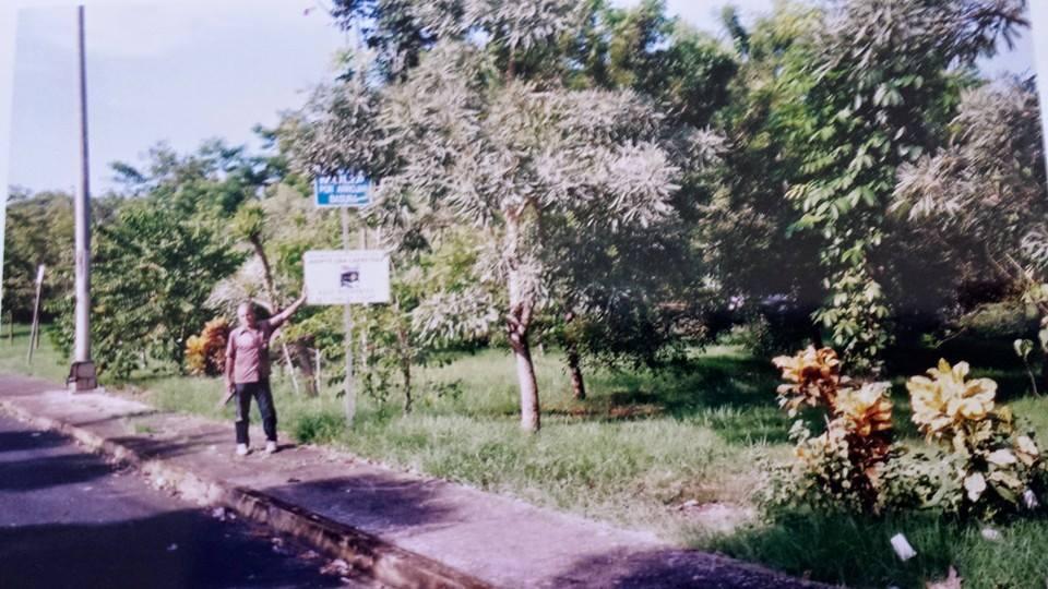 arboretum-don-esteban